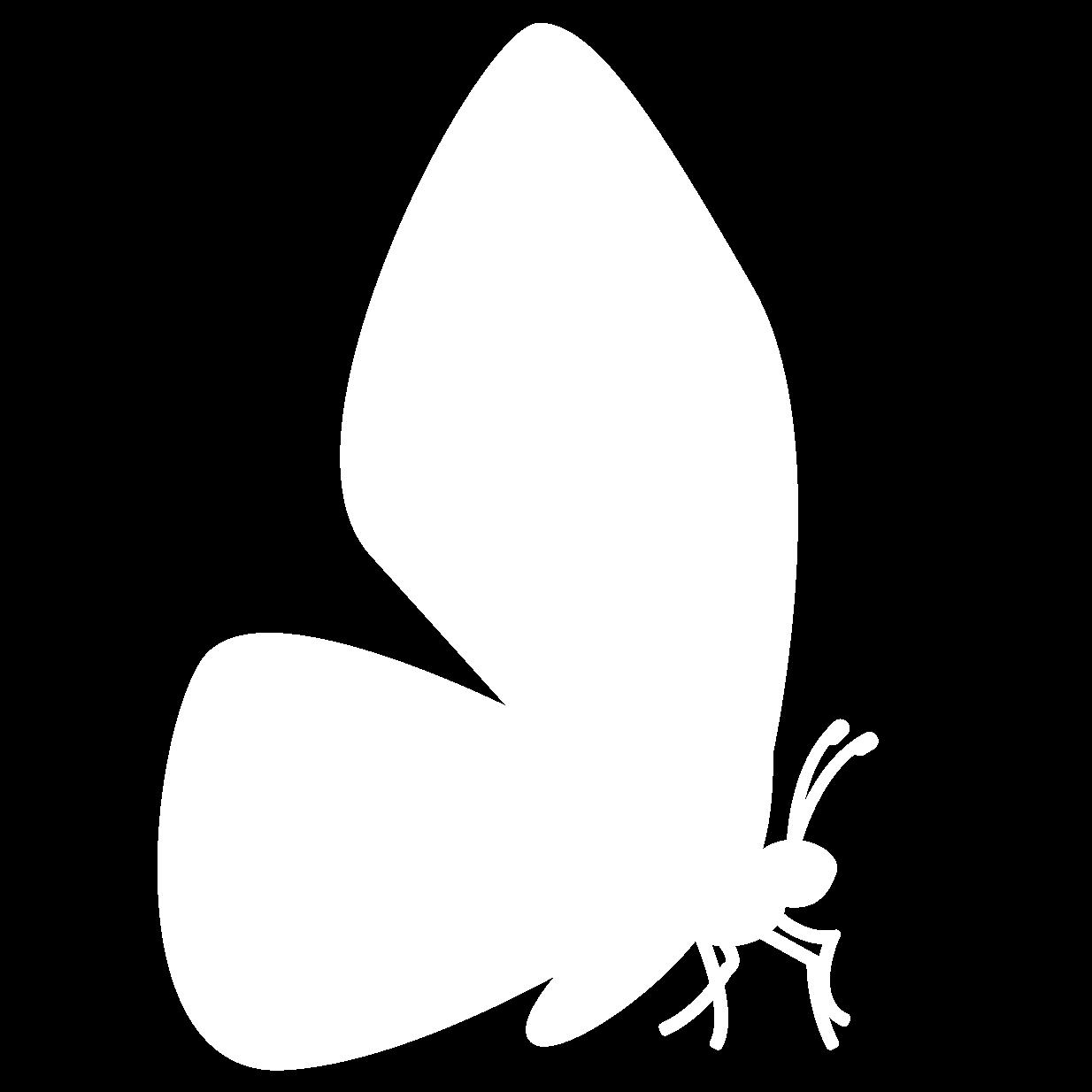 vlinder-wit-rechts